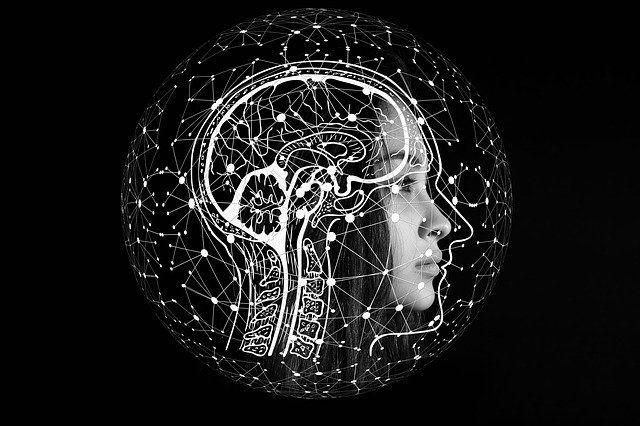 AI vs ML