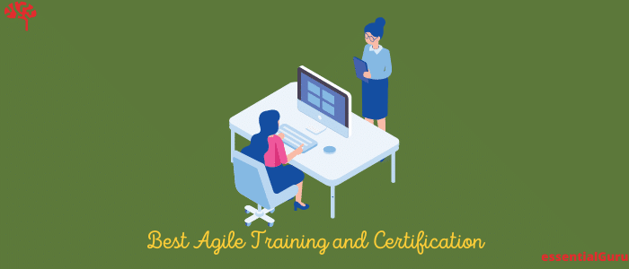 Best Agile Online Training Courses and Certification