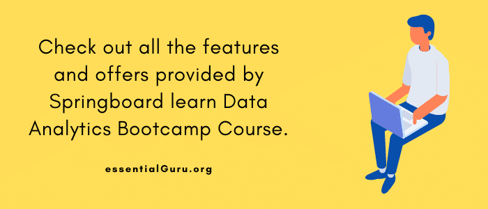 Springboard Data Analytics Bootcamp review