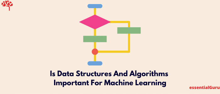 Is Data Structures And Algorithms Important For Machine Learning