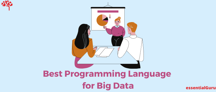 Which Programming Language to Learn for Big Data
